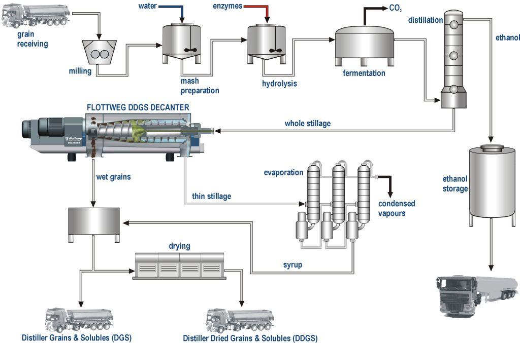 Bioethanol-Herstellung
